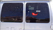 Octomom -- Some A-hole EGGED My House