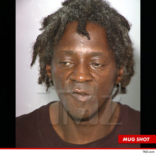 1017_flava_flav_mug_shot_article_Tmz