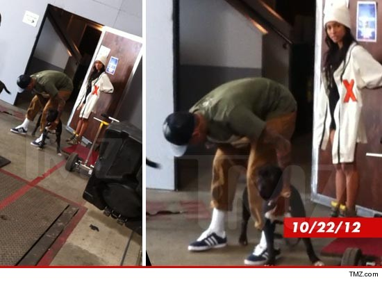 1023-chris_brown_Karrueche-Tran_tmz_wm_2