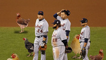 Detroit Tigers -- It's All About the Chicken This Year