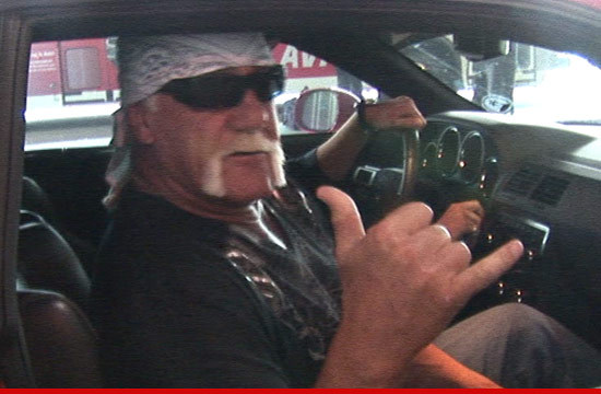1102_hulk_hogan_article