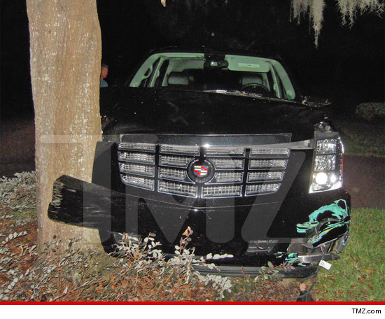 1102-tiger-woods-thanksgiving-tmz
