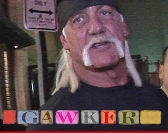 1114-hulk-hogan-tmz-gawker