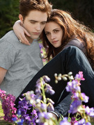"""Twilight"" Finale Conquers Weekend Box Office"