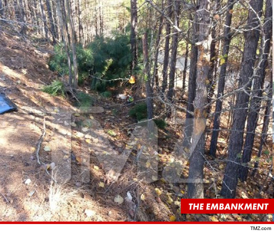 1128_bobbi_kristina_car_tmz_wm_article_embankment