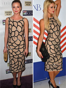 Dueling Dresses: Emily VanCamp vs. Paris Hilton!