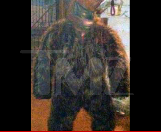 1204-Crazy-Tony-gorilla-tmz