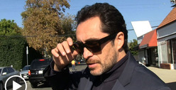 Demian Bichir News, Pictures, and Videos | TMZ.com