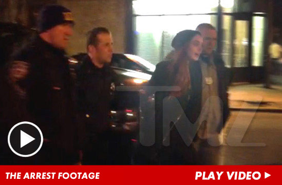 1211_arrest_footage_lindsay_launch