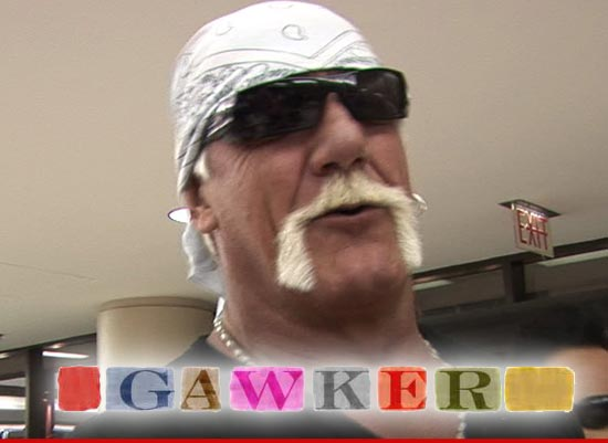 0103_HOGAN_gawker_tmz