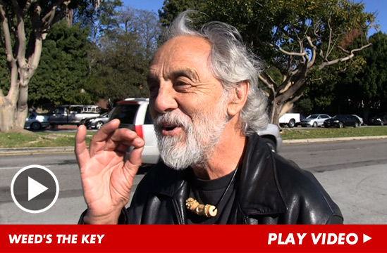 010713_tommy_chong_launch