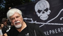 'Whale Wars' Star Paul Watson Sued -- You Sank My Boat and Blamed the Japanese