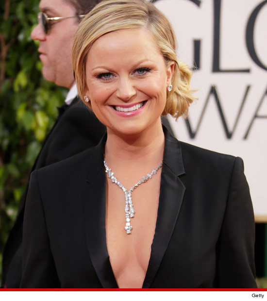 0113_amy_poehler_getty