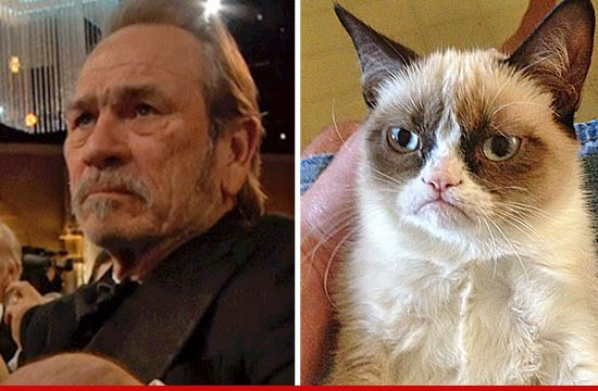 Tommy Lee Jones Grumpy Cat Face