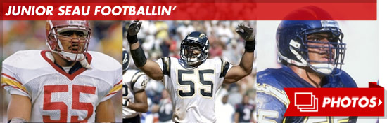 0123_junior_seau_footer