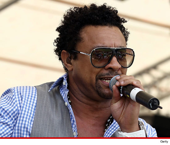 0124-shaggy-getty