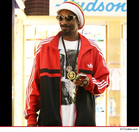 0124_snoop_lion_x17