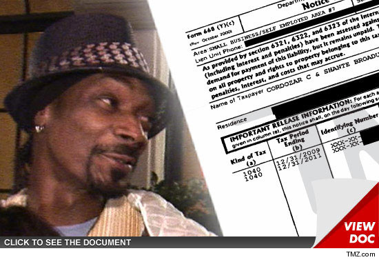 0215-snoop-dogg-tax-doc