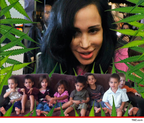0219-octomom-kids-weed