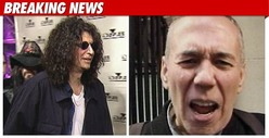 Howard Stern -- Aflac Had &#039;No Reason&#039; to Fire Gilbert