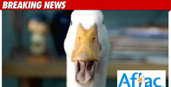 Aflac Duck Gets A 36-Year-Old Male Voice