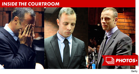 0220_oscar_pistorius_courtroom_footer