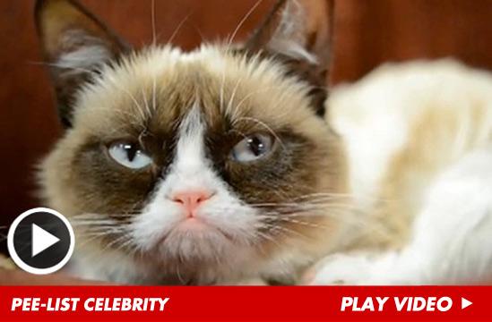 0311_grumpy-cat-launch