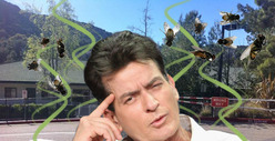 Poop Companies Side with School In Charlie Sheen Feud