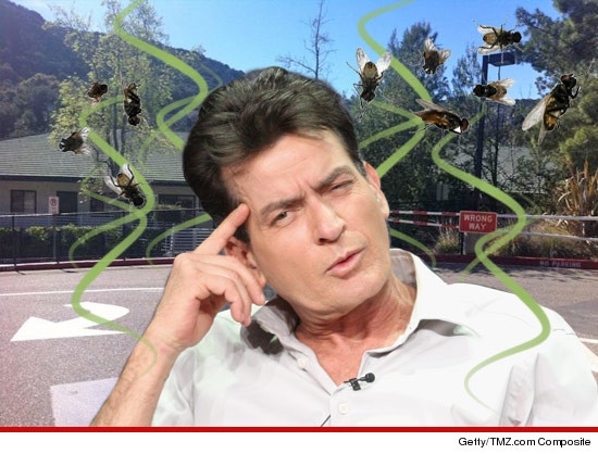 0319-charlie-sheen-stink
