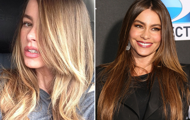 Sofia Vergara Blonde: See Her New 'Do
