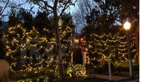 Neighbors to Maria Shriver -- TAKE DOWN YOUR XMAS LIGHTS ALREADY!!!