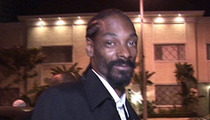 Snoop Lion -- Rap and Gay Don't Mix