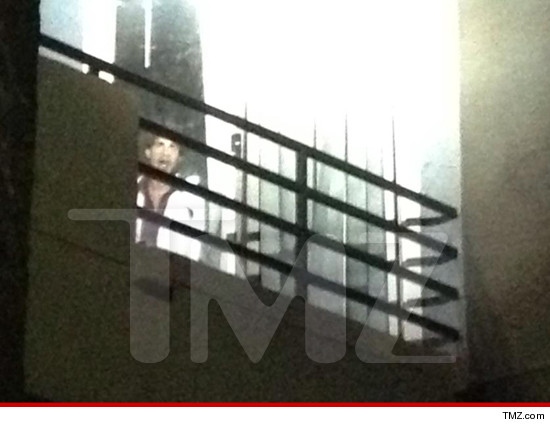 0508-scarface-hollywood-tmz