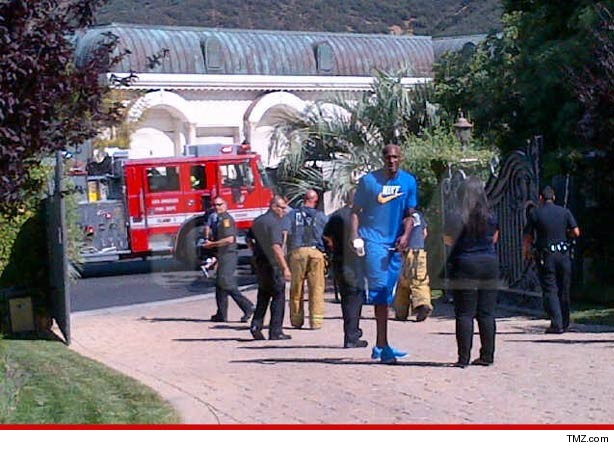 0510_lamar_odom_swatting_tmz_article
