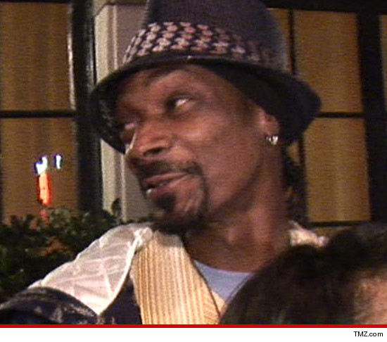0510-snoop-lion-tmz