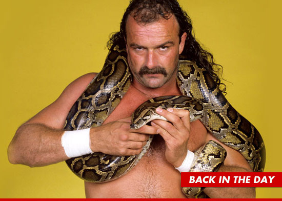 0514-jake-roberts-snake