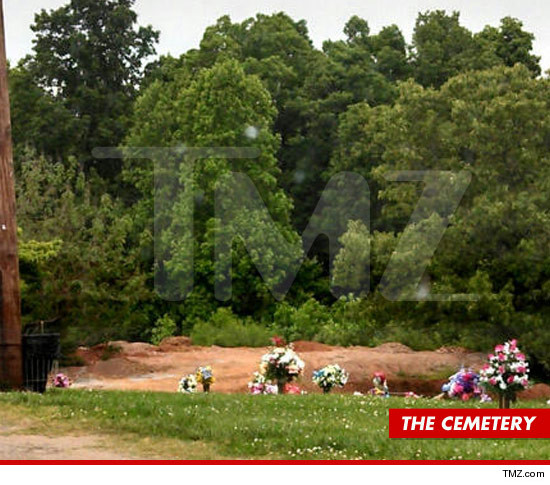 0516-dick-trickle-cemetary-2-tmz