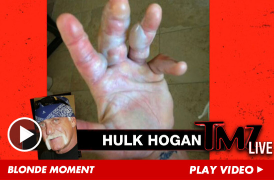 052813_hulk_hogan_tmzlive_launch