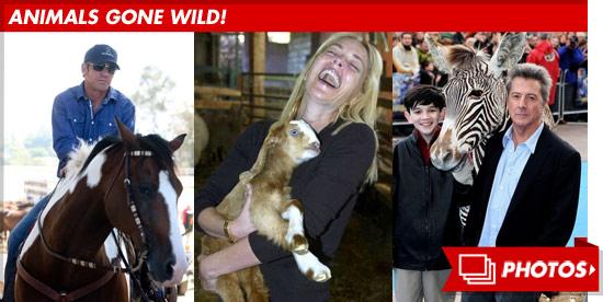 0612_animals_gone_wild_footer