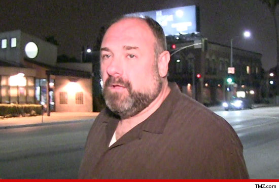 0619_james_gandolfini_article_tmz