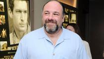 James Gandolfini Dead at 51 -- Stars React on Twitter