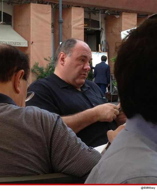 0620_james_gandolfini_meal_rome_twitter