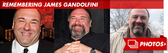 0620_remembering_james_gandolfini_footer