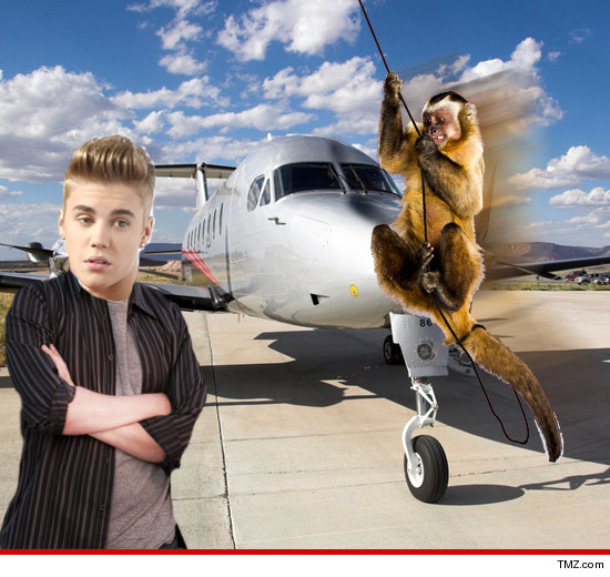 0621_justin_bieber_plane_monkey_tmz_Article