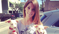 Ashley Greene Adopts Puppies After Losing Dog to Fire!