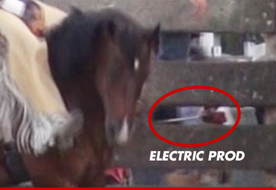 0701_horse_electric_prod