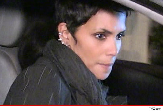 0708_halle_berry_tmz_article