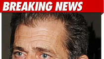 Mel Gibson Dropped by Agent