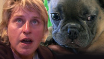 Ellen DeGeneres -- Calls Cops in Attempt to Rescue Abused Puppy