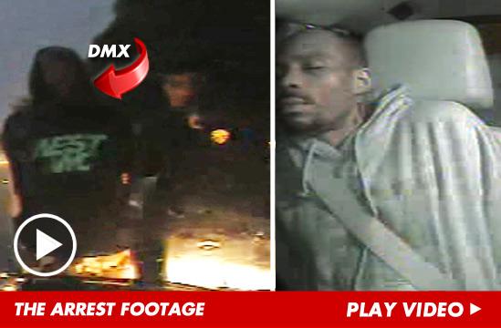 072613_dmx_arrest_launch_v2